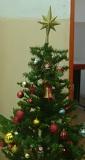 c_tree_s
